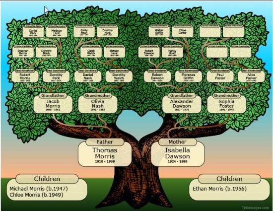 Populaire Albero Genealogico - Crea il tuo Albero Genealogico ZA45
